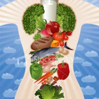 Белковая диета 14 дней  потеря веса 10 кг Отзывы
